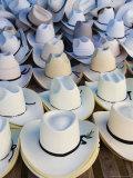 Hats  Market Day at Zaachila  Oaxaca  Mexico  North America