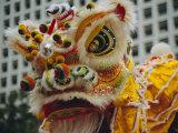 Costume Head  Lion Dance  Hong Kong  China