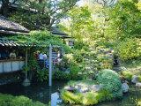 The Japanese Tea Garden  Golden Gate Park  San Francisco  USA