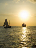 Sailboats at Sunset  Key West  Florida  United States of America  North America