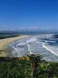 Plettenberg Bay  Cape Province  South Africa