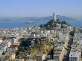 Coit Tower on Telegraph Hill  San Francisco  California  USA