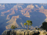 The South Rim of the Grand Canyon  Arizona  USA