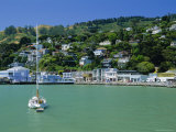 View of Sausalito on the San Francisco Bay  California  USA