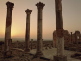 Roman Ruins  Volubilis  Morocco  North Africa  Africa