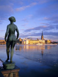 Statue and City Skyline  Stockholm  Sweden  Scandinavia  Europe
