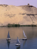 Three Feluccas on the River Nile  Aswan  Nubia  Egypt  North Africa  Africa