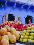 Fruit Market  Jodphur  Rajastan  India
