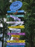 Signpost  Freeport  Grand Bahama  Bahamas  Central America