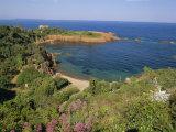 Esterel Corniche Near St Raphael  Cote d'Azur  Mediterranean Coast  Provence  France  Europe