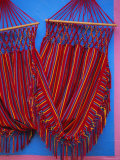Hammock  Taquira  Boyaca Region  Colombia  South America