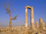 The Temple of Hercules  Amman  Jordan  Middle East