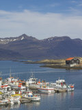 Fishing Boats in Djupivogur Harbour  East Area  Iceland  Polar Regions