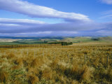 Landscape in the Scottish Borders  Scotland  UK  Europe