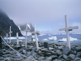 Grave Site with Memorials to Whalers and Scientists  Antarctica  Polar Regions
