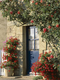 Exterior of a Blue Door Surrounded by Red Flowers  Roses and Geraniums  St Cado  Brittany  France