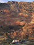 Farm and Lingmoor Fell at Sunrise  Great Langdale  Lake District National Park  Cumbria  England