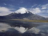 Volcano of Parinacola  Parque Nacional De Lauca  Chile