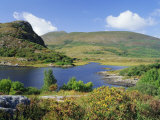 Ring of Kerry  Between Upper Lake and Muckross Lake  Killarney  Munster  Republic of Ireland (Eire)