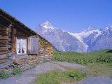 View from Grindelwald-Frist to Wetterhorn and Shreckhorn Mountains  Switzerland