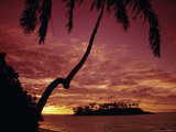 Silhouettes of Palm Trees and Desert Island at Sunrise  South Pacific  Pacific
