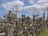 Hill of Crosses  Near Siauliai  Lithuania  Baltic States  Europe
