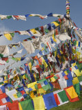 Buddhist Prayer Flags  Mcleod Ganj  Dharamsala  Himachal Pradesh State  India  Asia