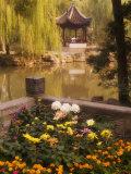 Humble Administrator's Garden  Unesco World Heritage Site  Souzhou (Suzhou)  China  Asia