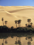 Oum El Ma (Umm El Ma) Lake  Mandara Valley  Southwest Desert  Libya  North Africa  Africa