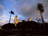 Palm Trees in Main Plaza and Grenada Cathedral  Grenada  Nicaragua  Central America