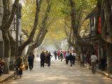 Street Scene  Souzhou (Suzhou)  China  Asia