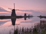 Windmills at Kinderdijk at Dawn  Near Rotterdam  Holland  the Netherlands