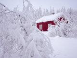 Nordmarka  Oslo  Norway  Scandinavia  Europe