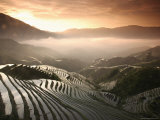 Longsheng Terraced Ricefields  Guangxi Province  China  Asia