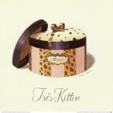 Tres Kitten