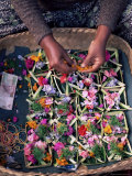 Temple Offerings  Mount Batur Area  Bali  Indonesia  Southeast Asia  Asia