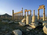 The Archaeological Site  Palmyra  Unesco World Heritage Site  Syria  Middle East