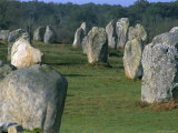 Alignments of Megalithic Standing Stones  Carnac  Morbihan  Brittany  France  Europe