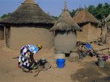 Mud Village  Huts  Mandi Region  Mali  Africa