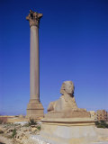 Pompey's Pillar  Alexandria  Egypt  North Africa