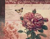 Le Rose a Monte I