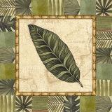 Tropical Leaf III