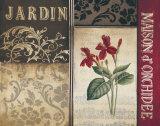 Belle Jardin I