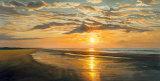 Seashore Tranquility
