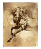 Baroque Horse Series III: III