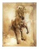 Baroque Horse Series III: III