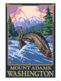 Fly Fishing Scene  Mount Adams  Washington