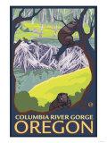 Beaver Family  Columbia River Gorge  Oregon