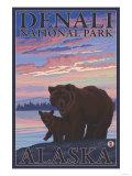 Bear and Cub  Denali National Park  Alaska