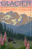 Spring Flowers  Glacier National Park  Montana